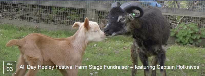 Heeley Festival2015